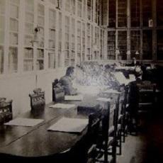 biblioteca municipal-tenerife