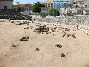 tenerife-archeologia (2)